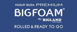 Bigfoam Website